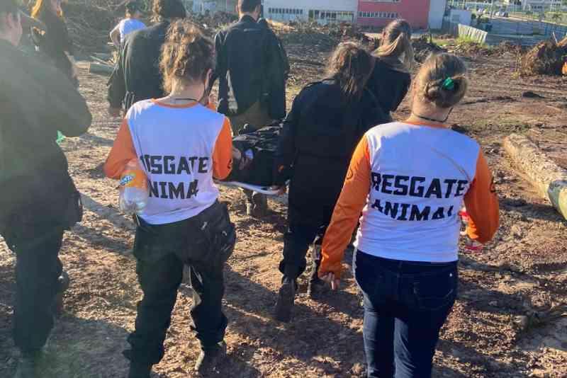 Grande simulação de resgate de animais em situação de desastre ambiental será realizado em Contagem, MG