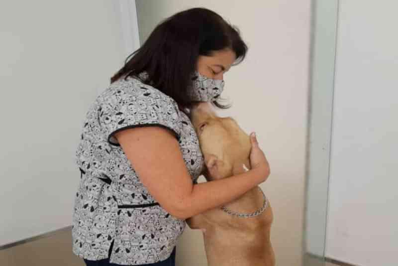 Cachorro é resgatado depois de ser amarrado e espancado na zona norte de Juiz de Fora, MG