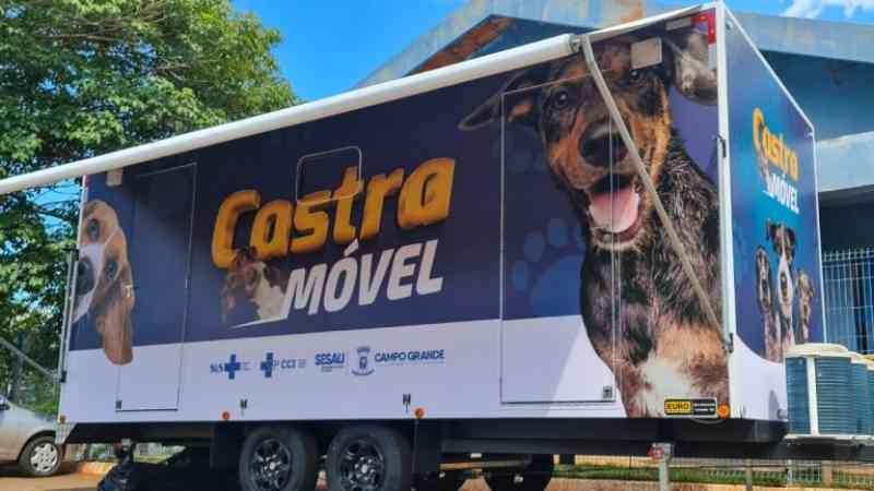 Unidade móvel vai levar castração de cães a bairros com maior vulnerabilidade social, em Campo Grande, MS