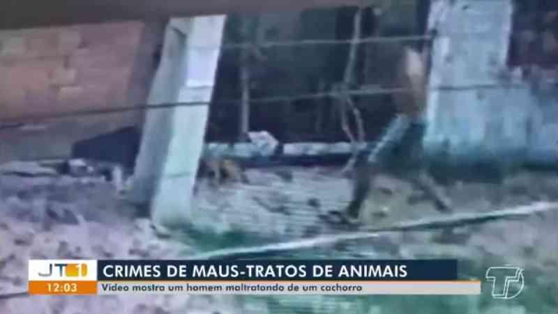 Após ser flagrado maltratando animais em Santarém (PA), homem é multado em R$ 3 mil