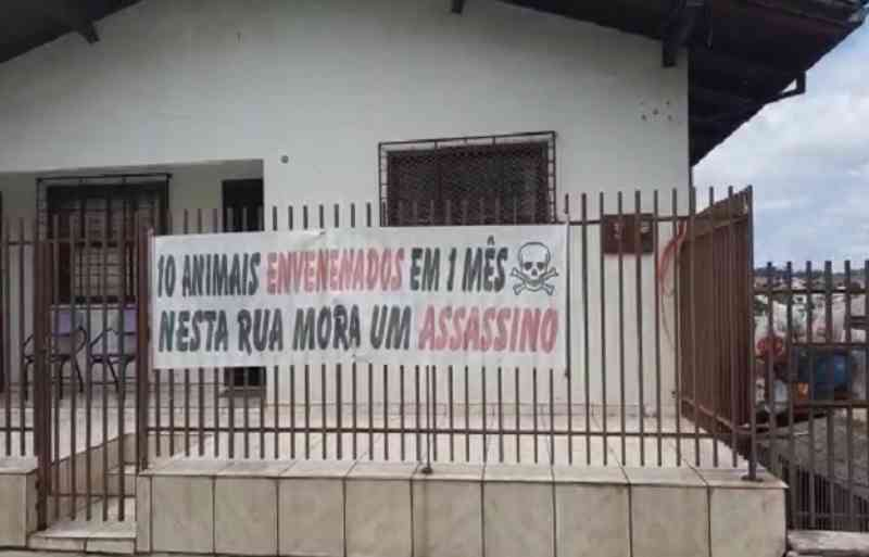 Moradora denuncia envenenamento de animais no Berger, em Caçador, SC