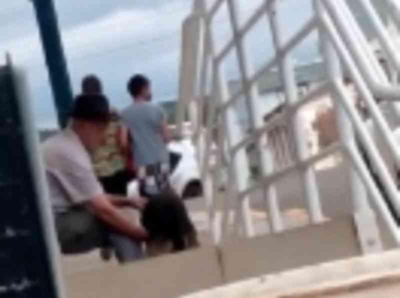 Polícia prende homem que teria estuprado cachorro em Lebon Régis, SC