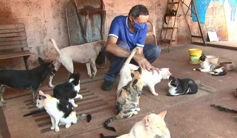 Morador de Nova Europa (SP) precisa de ajuda para cuidar de cães e gatos abandonados