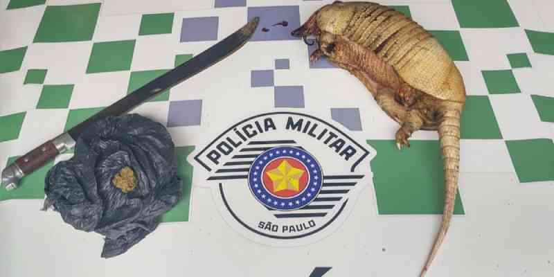 Homem é preso por maltratar cachorro e matar tatu em Peruíbe, SP