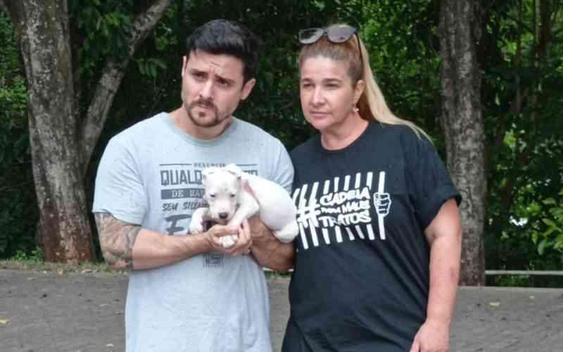 Casal acusado de mutilar orelhas de filhote de cão pit bull é preso