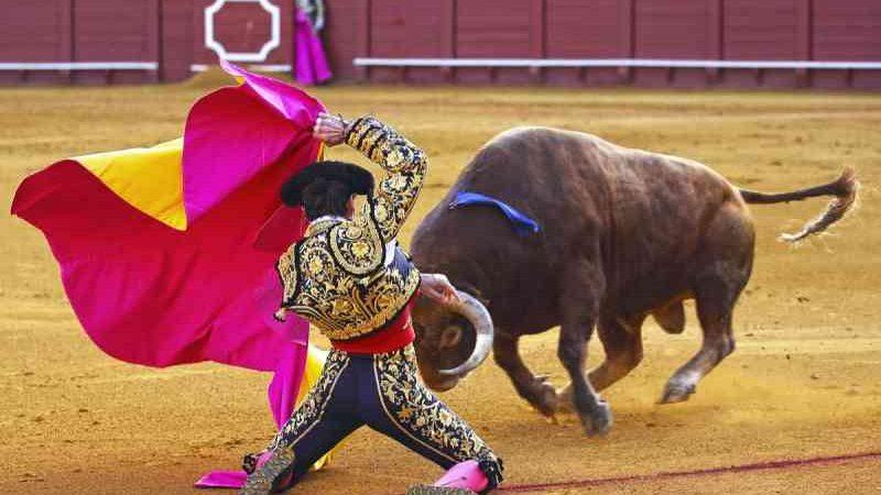 Vitória! A Unesco se recusa a considerar as touradas um patrimônio cultural imaterial da humanidade