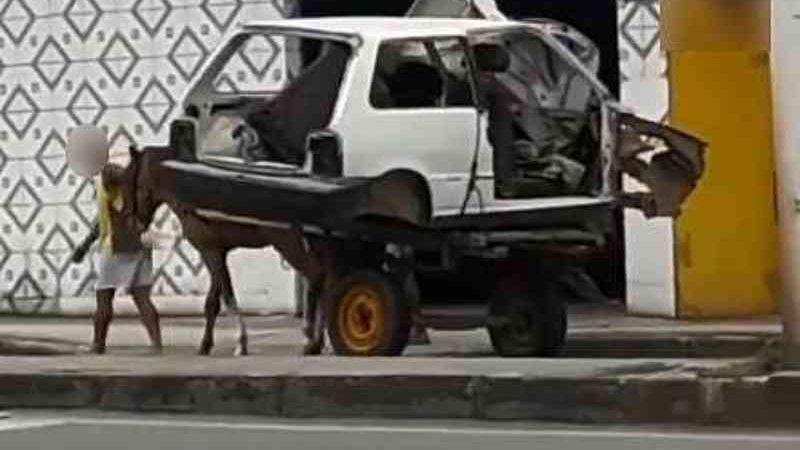 Maus-tratos: vídeo mostra cavalo puxando carroça com carcaça de carro em Maceió, AL