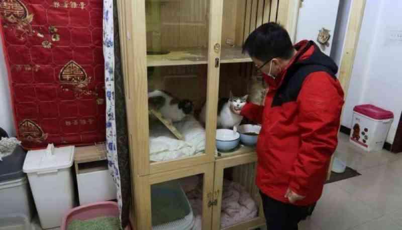 Ativista animal em Wuhan, na China, feliz por estar de volta aos resgates de rotina