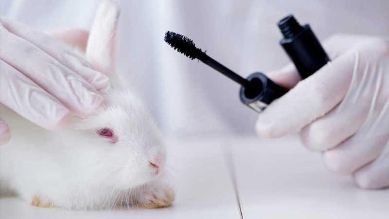 China permite a importação de cosméticos não testados em animais da França