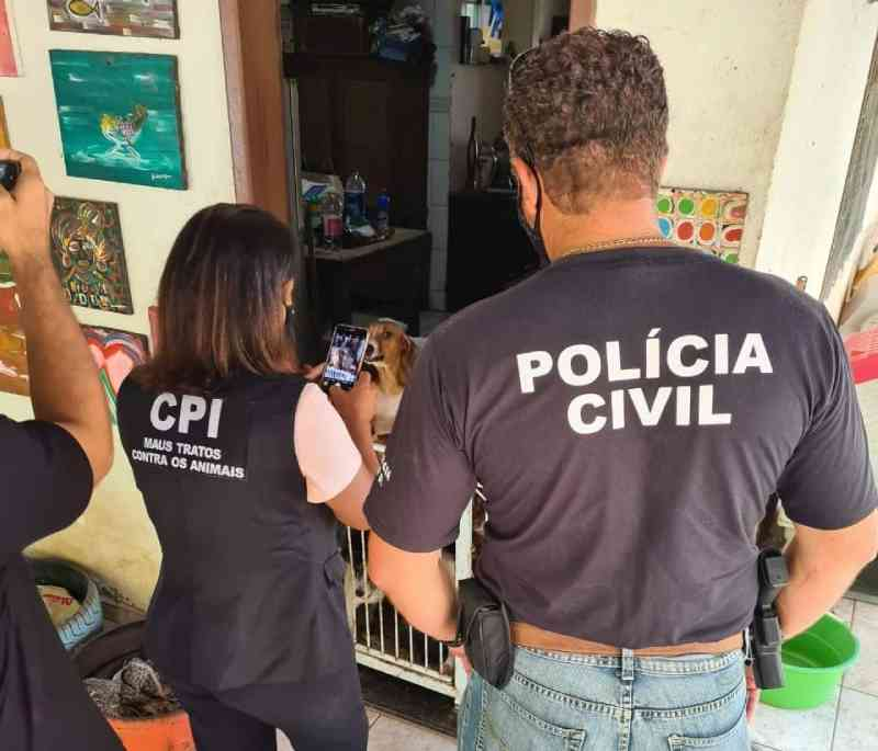 Abrigo de animais na Serra (ES) é interditado durante operação conjunta