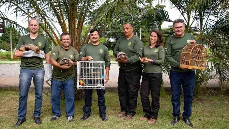 Prefeitura da Serra (ES) registra recorde de resgate de animais silvestres em 2020