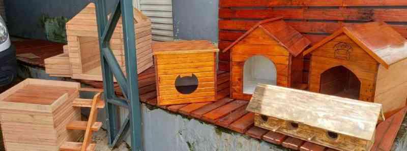 Presos de Lavras (MG) fabricam casas de madeira para ajudar ONG que acolhe animais abandonados