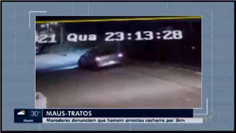 Polícia investiga denúncia sobre cadela arrastada por carro em Oliveira, MG; animal morreu