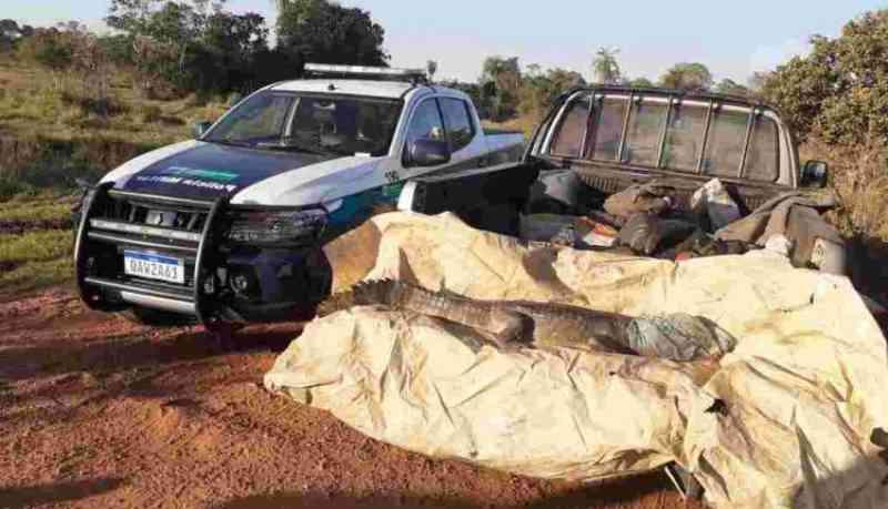 Polícia Militar Ambiental autua 22 caçadores em R$ 90 mil e apreende 21 armas de caça durante o ano passado