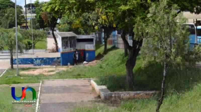 Homem é flagrado agredindo cachorro a chutes em Umuarama, PR