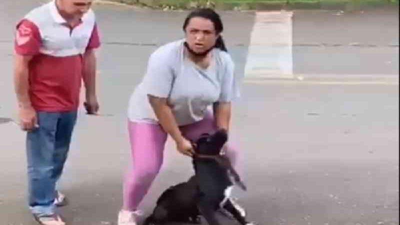 ''Pode gravar e denunciar. O cachorro é meu'', diz casal que foi flagrado maltratando um cão em Colombo, PR