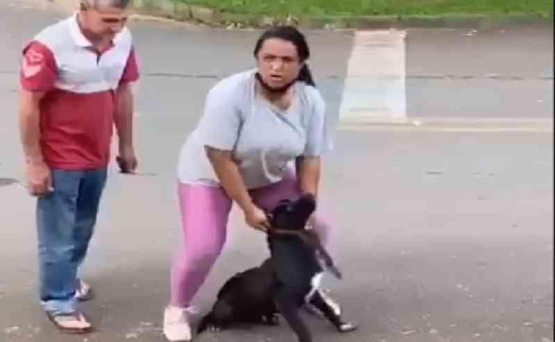 'Pode gravar e denunciar. O cachorro é meu', diz casal que foi flagrado maltratando um cão em Colombo, PR