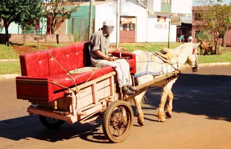 Prefeitura de Santo Ângelo (RS) quer proibir veículos de tração animal na área urbana