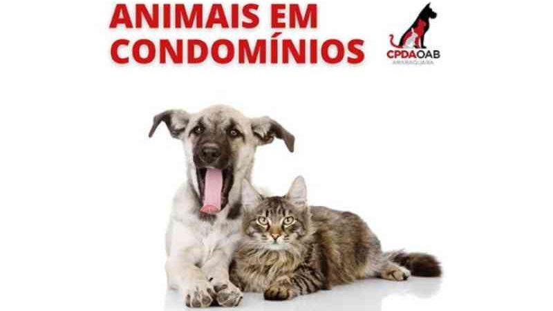 Cartilha sobre animais em condomínio é elaborada pela OAB-Araraquara, SP