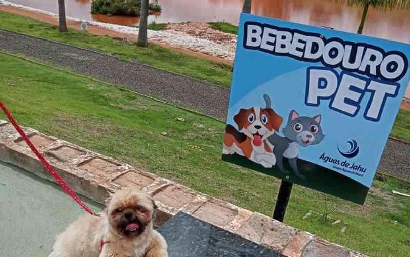 Iniciativa de concessionária oferece bebedouros para animais em locais públicos de Jaú, SP