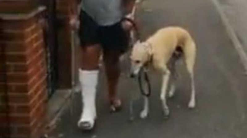 Homem manco gasta R$ 2,1 mil em veterinário para descobrir que seu cão o imitava; assista