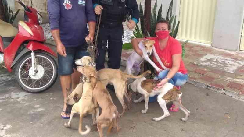 Cinco cachorros são resgatados em Icó (CE) após denúncias de maus-tratos