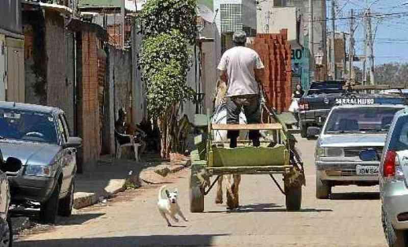 Governo do Distrito Federal dará curso profissionalizante para inserir carroceiros no mercado de trabalho