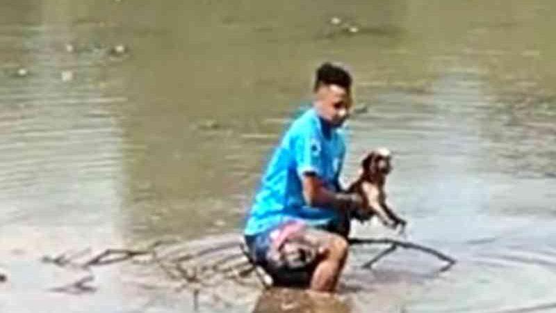Homem entra em lago de parque e salva cadela presa na lama, em Goiânia; vídeo