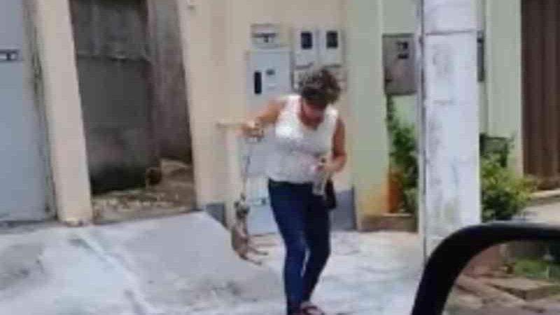 Mulher é presa suspeita de matar filhote de cachorro em Trindade, GO; vídeo