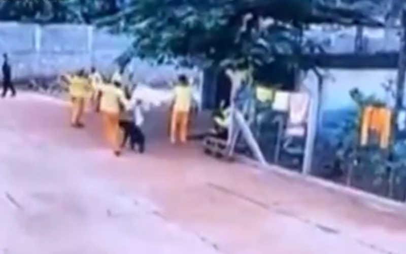 Detento do semiaberto é filmado matando cachorro com chute no presídio de Cachoeira Alta, GO
