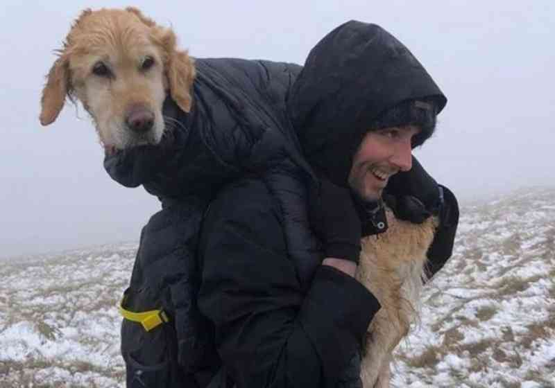Alpinistas carregam nas costas por 10 km cão perdido em montanha fria