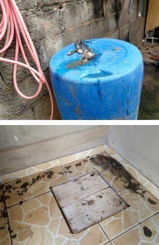 Lugar estava completamente sujo e insalubre (Polícia Civil de Minas Gerais/Divulgação)