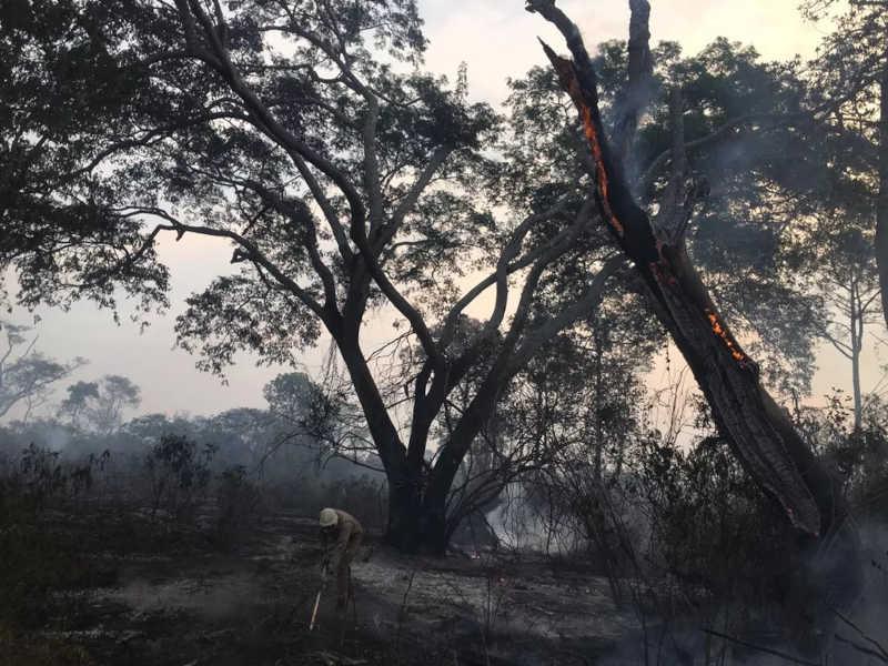 Incêndio que destruiu mais de 4 milhões de hectares do Pantanal, em Corumbá. — Foto: Corpo de Bombeiros/Divulgação