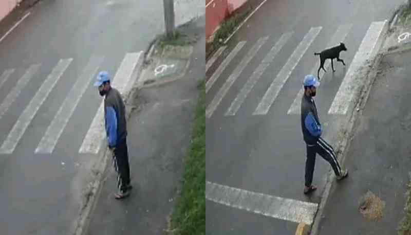 Homem flagrado praticando zoofilia contra cão é encontrado pela polícia e afirma ter deficiência mental