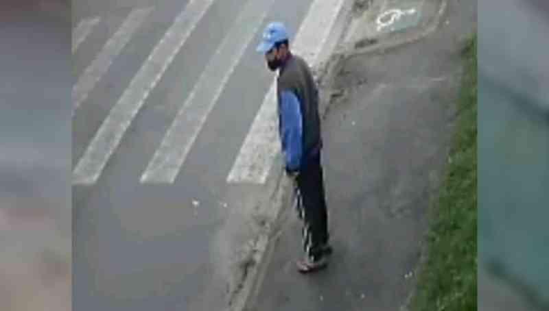 Polícia procura homem que abusou de cachorro de rua em Piraquara, PR
