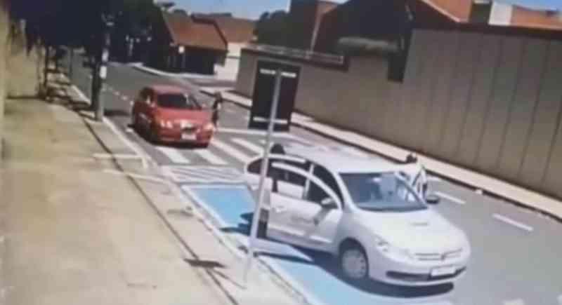 Polícia investiga crime de maus-tratos após mulher abandonar filhote de cão em Assis, SP; vídeo