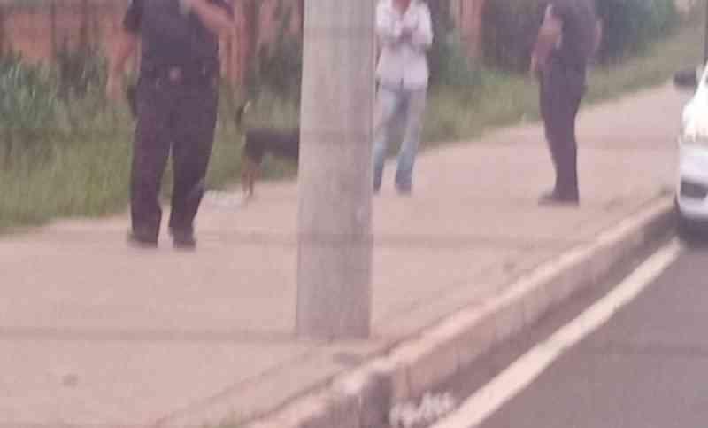 Mulher denuncia abuso sexual contra cachorro em Botucatu, SP
