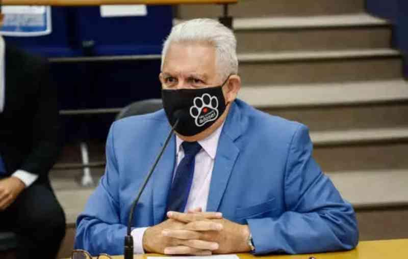 PL cobra que síndicos denunciem maus-tratos a animais em condomínios, em São Caetano do Sul, SP