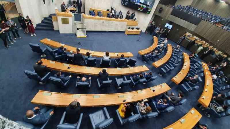 Câmara Municipal de SP aprova criação de CPI para investigar maus-tratos a animais