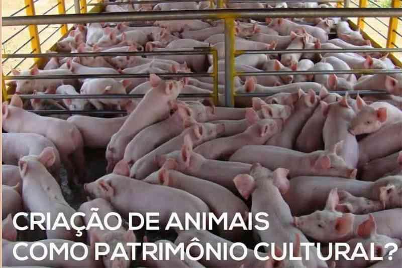 Criação de animais não pode ser Patrimônio Cultural Imaterial. Vote 'Discordo totalmente'