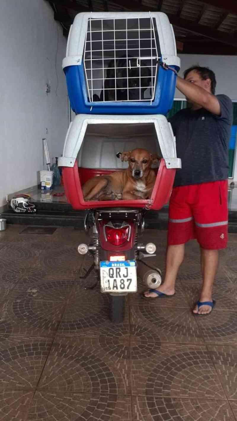 Homem se muda e adapta moto para viajar 1.400 quilômetros e levar suas cadelas com ele