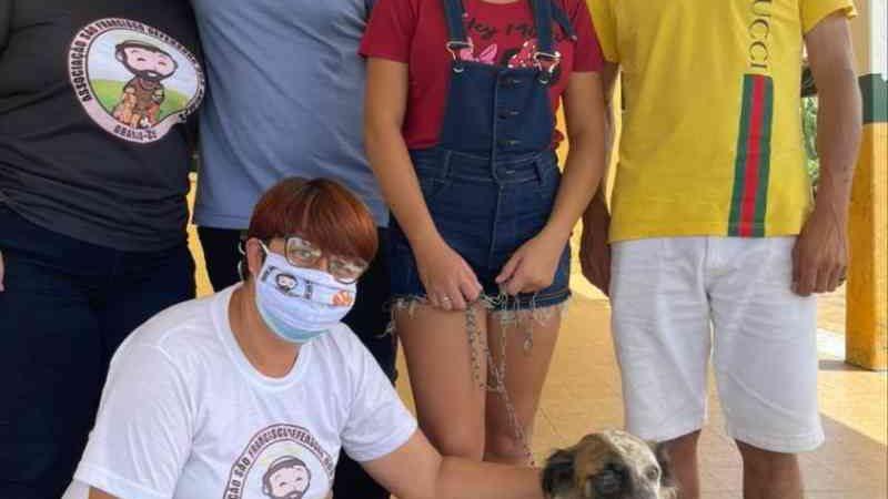 Cachorro baleado no olho em Granja (CE) recebeu alta médica
