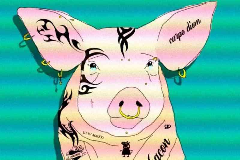 Câmara Legislativa do DF propõe lei que veta tatuagem e piercing em animais. Entenda