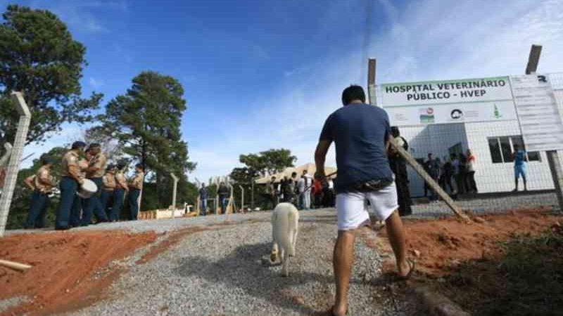 Governo do DF libera R$ 10 milhões para funcionamento do hospital veterinário