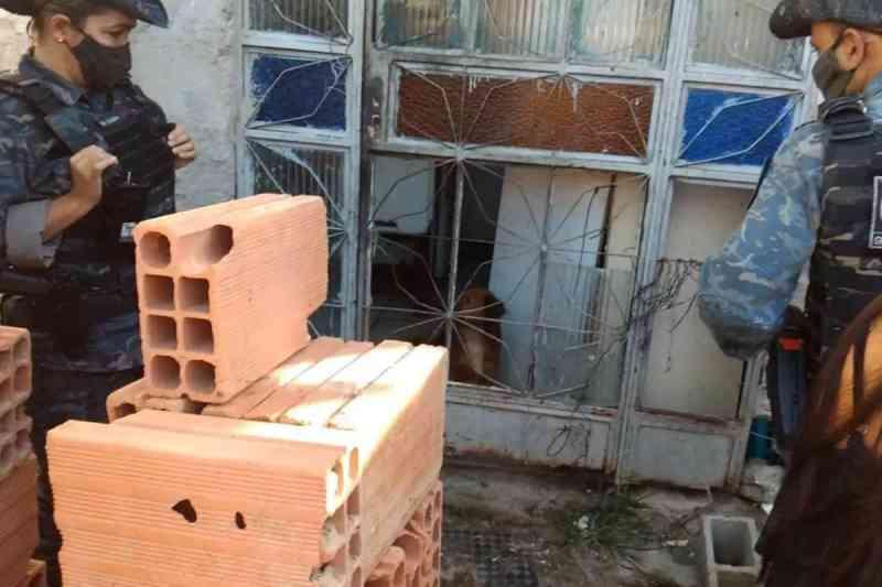 Seis cães vítimas de maus-tratos são resgatados em Betim, MG