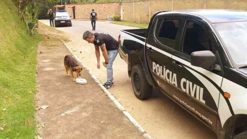 Polícia Civil de Juiz de Fora (MG) distribui 45 kg de ração para cães de rua