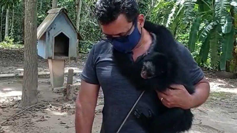 Macaco-aranha é resgatado — Foto: Núcleo de Fiscalização Integrada