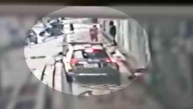 Carro da PM invade calçada, atropela e mata cachorra em Curitiba; VÍDEO