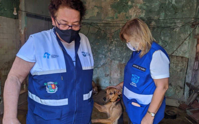 São João do Meriti (RJ) lança projeto de vacinação antirrábica em abrigos e residências que possuam 10 ou mais animais