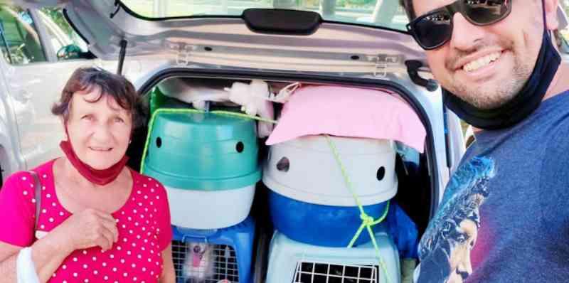 Mulher viaja 900 quilômetros para trazer 9 cachorros e um gato para Araraquara, SP
